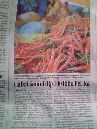 harga cabai Rp100.000/kg
